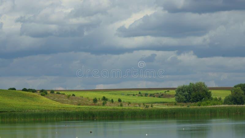 Sommerlandschaft mit Hügeln und See stockfotografie