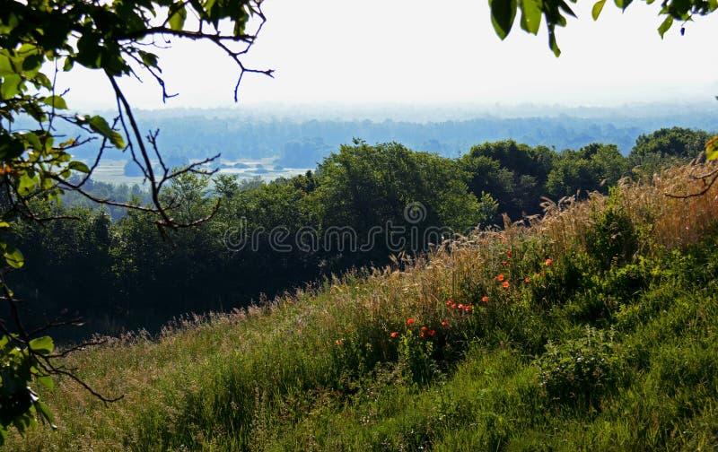 Sommerlandschaft mit Staubstraßen unter hohen grünen Hügeln stockbilder