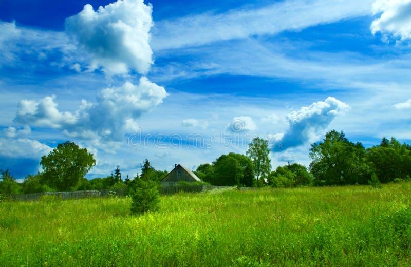 Sommerlandschaftshintergrund stockfoto