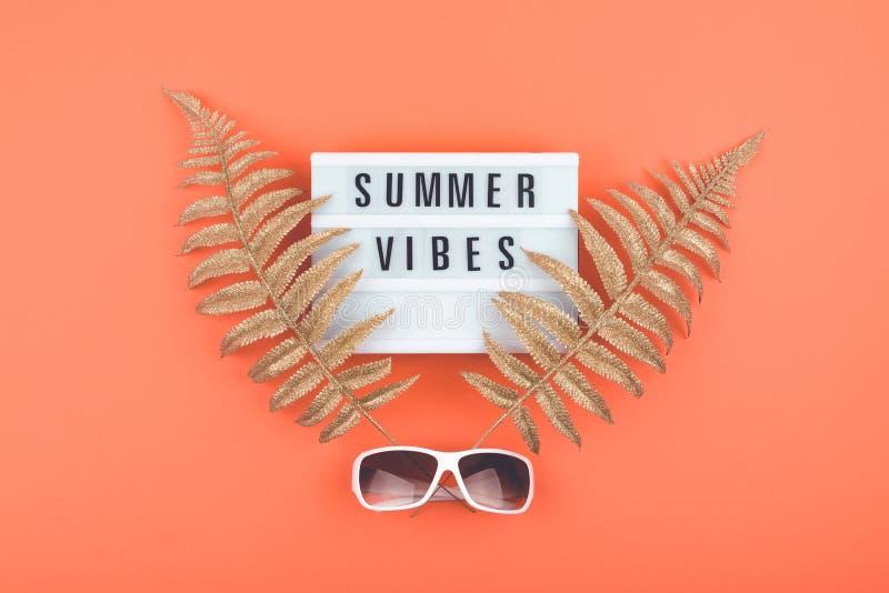Sommerluxusebene legen auf korallenroten Hintergrund mit Sommerschwingungenstext auf Leuchtkasten, goldenen tropischen Blättern u stockfotografie