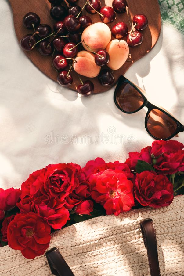 Sommerpicknick im Garten mit roten Gartenrosen in einer Weidentasche, in der Sonnenbrille und in den Kirschbeeren auf einer Decke stockfotografie