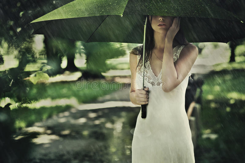 Sommerregen stockfotografie