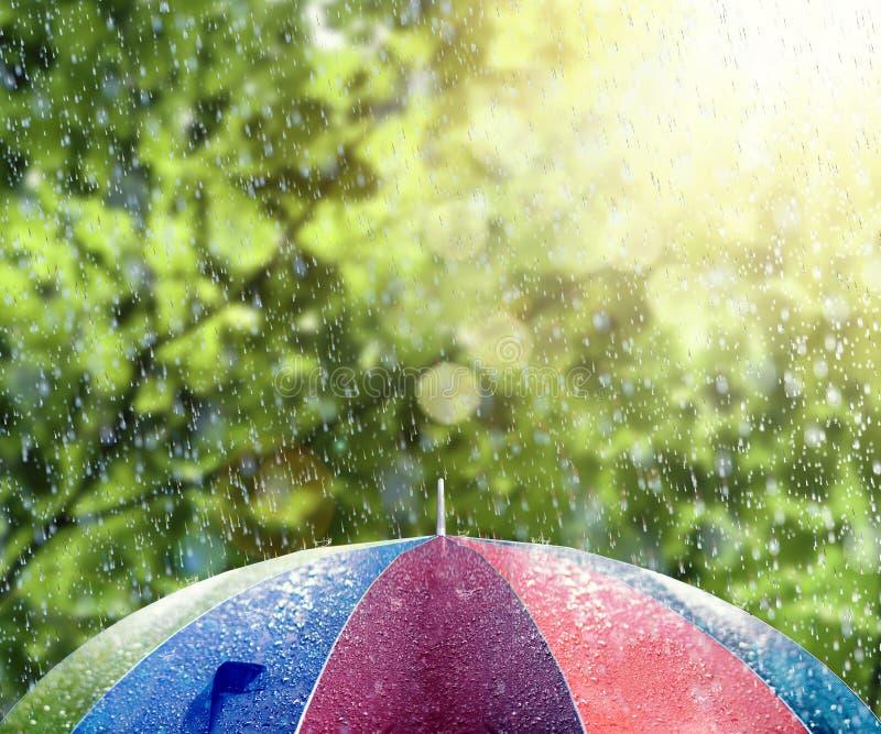 Sommerregen auf buntem Regenschirm lizenzfreie stockfotos