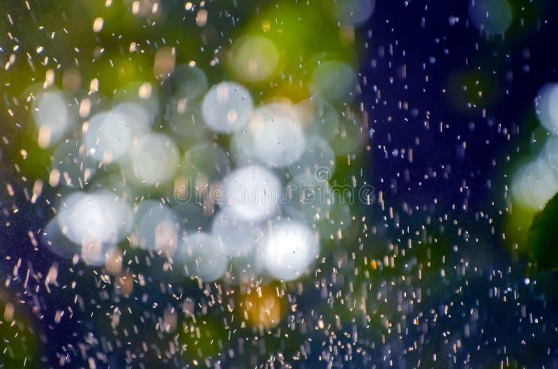 Sommerregen, der über einen natürlichen unscharfen Hintergrund von grünen Blättern, von Weichzeichnung bokeh Lichtern und von bla lizenzfreie stockfotografie