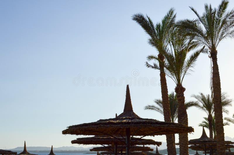 Sommerregenschirme des gelben Strandes des Strohs sonnen-schützende vom Heu, Stroh-förmige Hüte gegen den Hintergrund der Obertei lizenzfreies stockbild