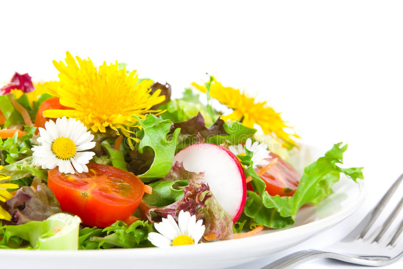 Sommersalat lizenzfreies stockbild