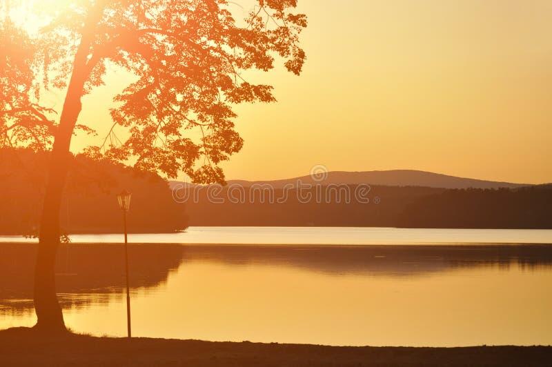 Sommerschattenbildlandschaft - Sonnenuntergang auf Elovoe See oder geziertem See lizenzfreies stockbild