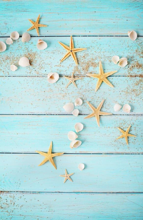 Sommerschnecken auf Holzboden lizenzfreie stockfotografie