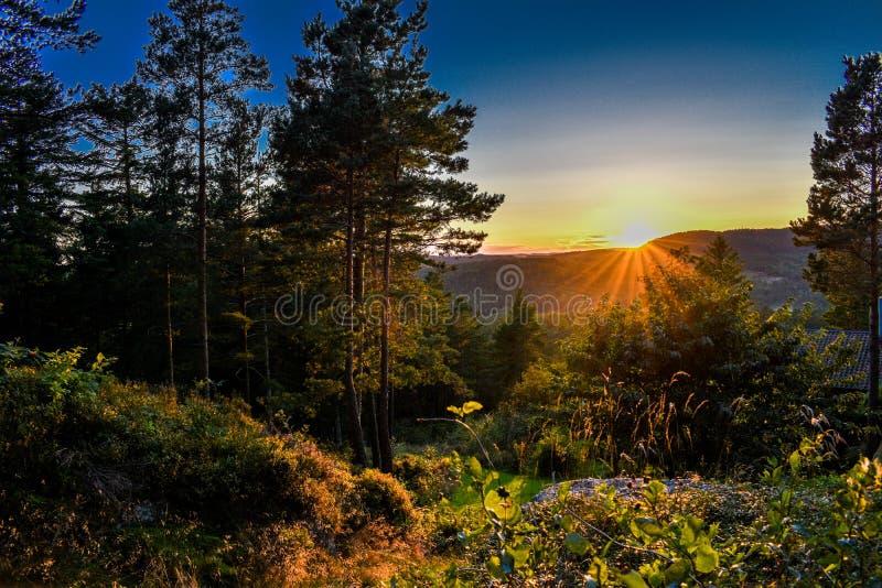 Sommersonnenuntergang von den Wäldern von Kristiansand in Norwegen lizenzfreie stockbilder