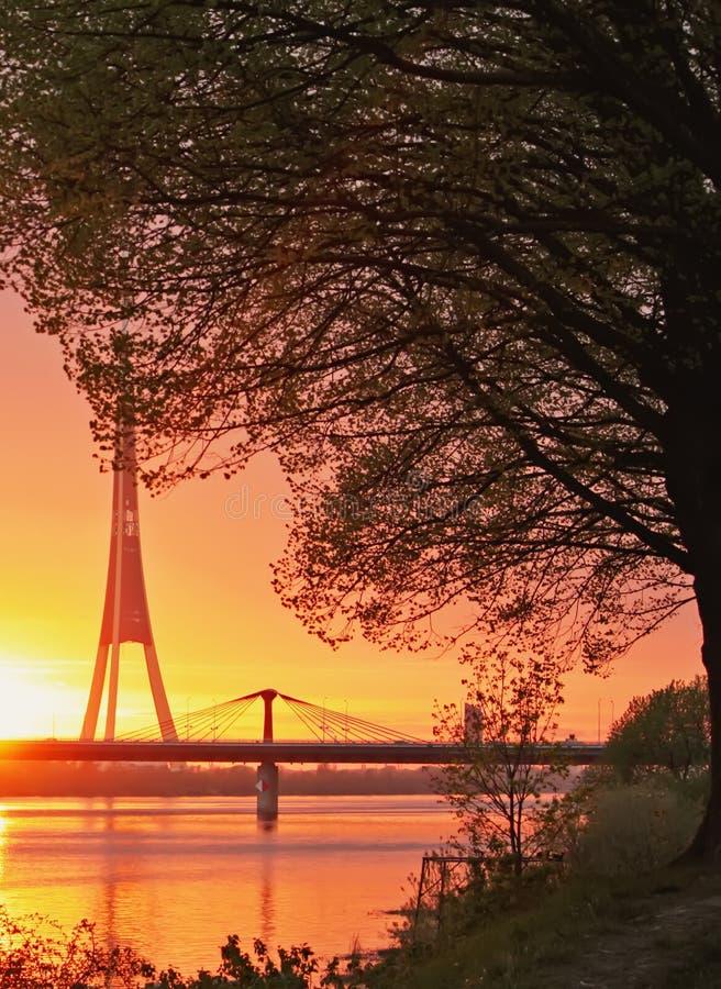Sommersonnenuntergangsonnenstrahlen stockbild