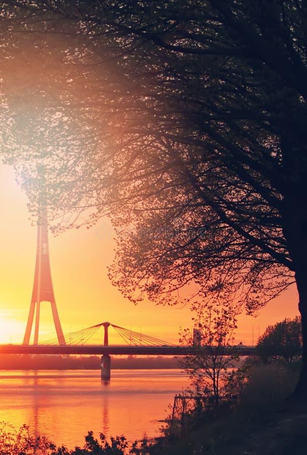 Sommersonnenuntergangsonnenstrahlen lizenzfreie stockbilder