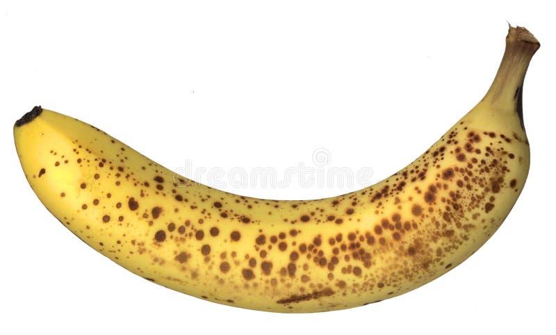 Sommersprossige Banane stockbild