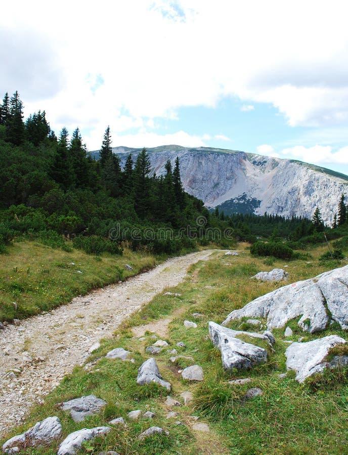 Sommerstraße in den Alpen lizenzfreies stockbild