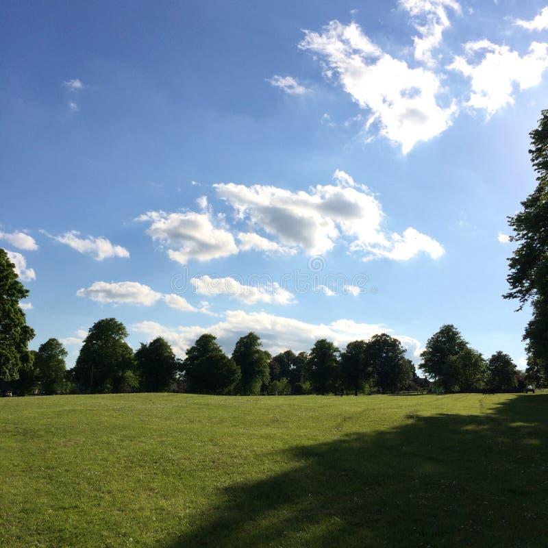 Sommertag am Park in Großbritannien lizenzfreie stockfotografie