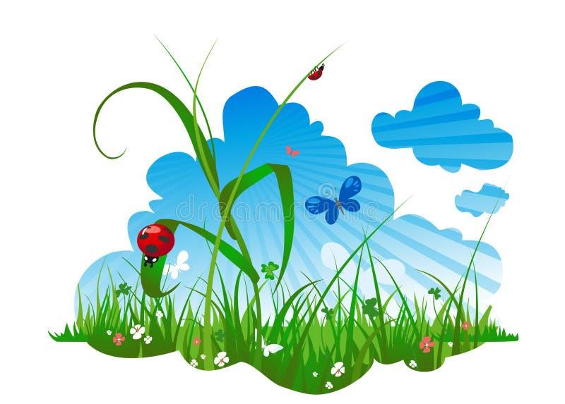 Sommerwiese mit einem Marienkäfer lizenzfreie abbildung