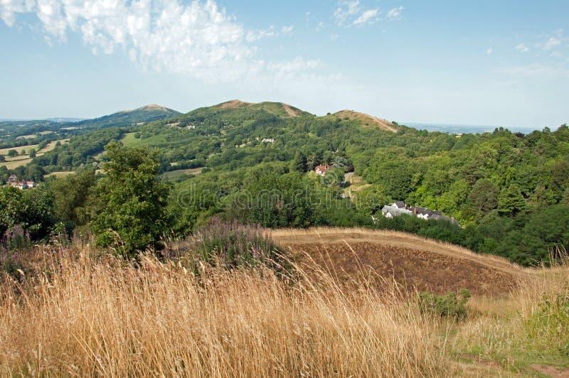 Sommerzeit, die in den Malvern-Hügeln von Worcestershire, England ficht stockbilder