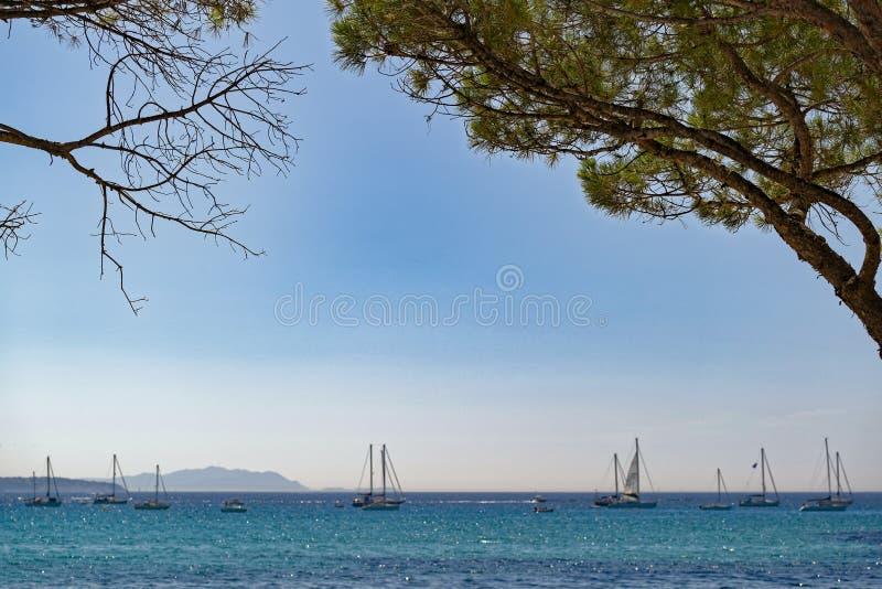 Sommerzeit im Süden von Frankreich lizenzfreies stockfoto