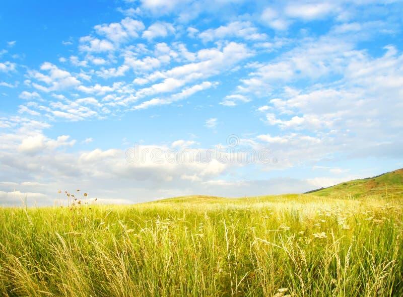 Sommerzeit, Solarfeld lizenzfreie stockbilder