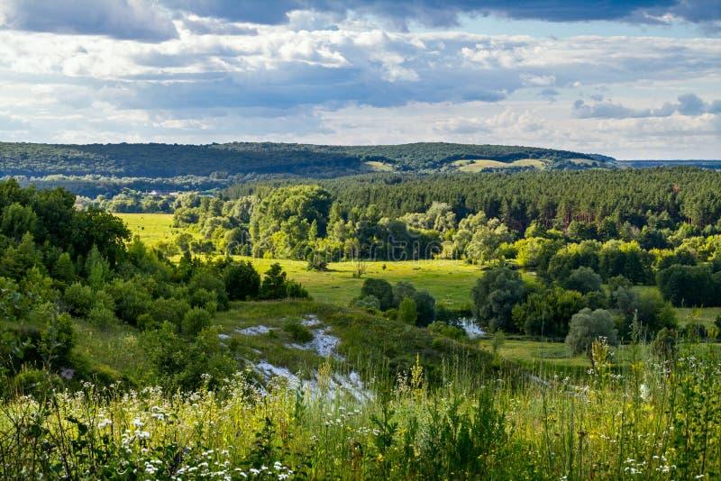 Download Sommerzeitlandschaft - River Valley Des Siverskyi Seversky Donets Stockbild - Bild von farbe, frech: 96934757