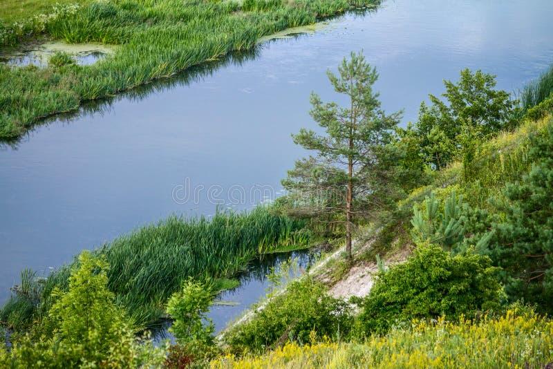 Download Sommerzeitlandschaft - River Valley Des Siverskyi Seversky Donets Stockbild - Bild von wälder, morgen: 96935377