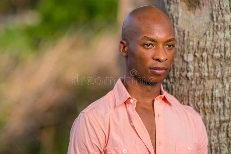 Sommerzeitporträt hübscher kahler Afroamerikanermann, der durch Baum mit dem rosa Hemd aufgeknöpft aufwirft lizenzfreie stockfotografie