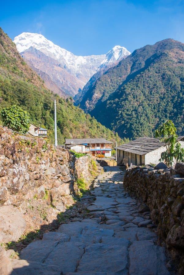 Download Sommet De Mountain View De Neige Sur Le Chemin Au Camp De Base D'Annapurna Image stock - Image du course, arbre: 87703709