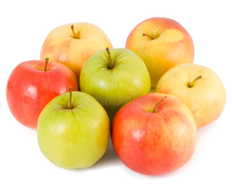 Sommige appelen royalty-vrije stock foto