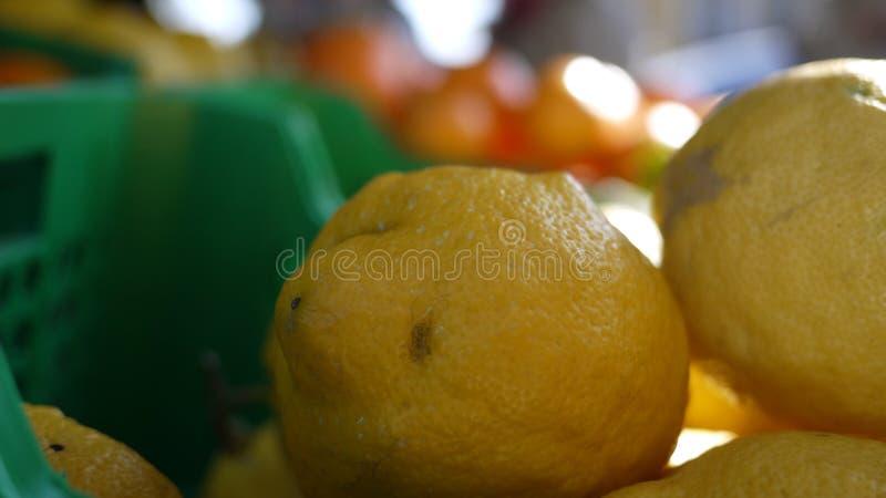 Sommige citroenen tevreden! royalty-vrije stock afbeelding