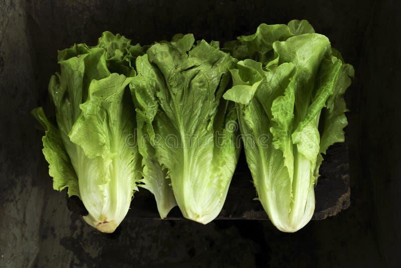 Sommige groenten royalty-vrije stock fotografie