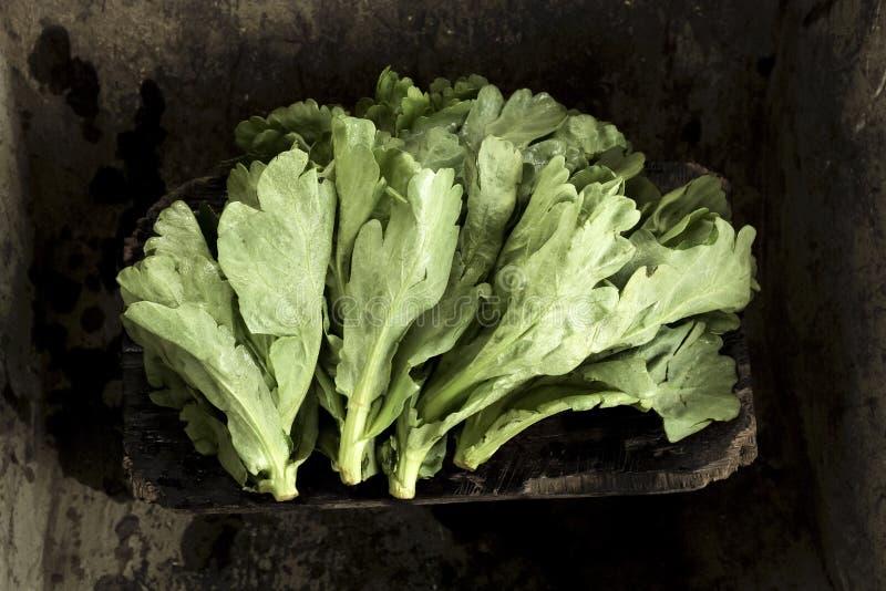 Sommige groenten stock foto's