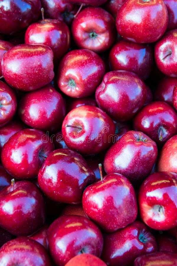 Sommige rode appelen royalty-vrije stock fotografie
