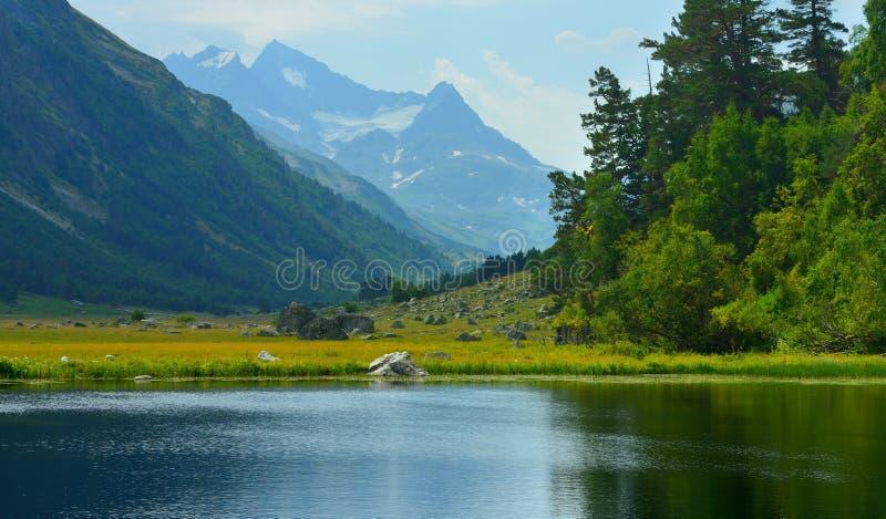 Sommità blu in Caucaso fotografie stock