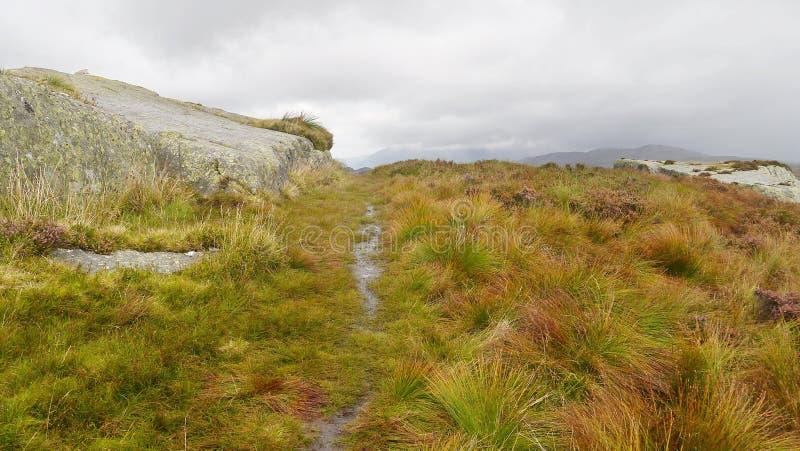 Sommità d'avvicinamento di Eagle Crag, distretto del lago immagini stock