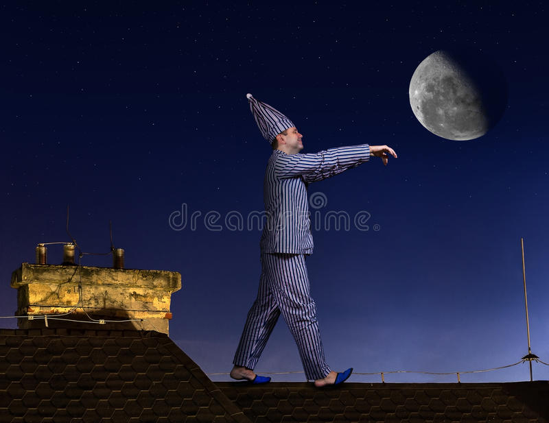 Somnambulist στη στέγη στοκ φωτογραφίες με δικαίωμα ελεύθερης χρήσης
