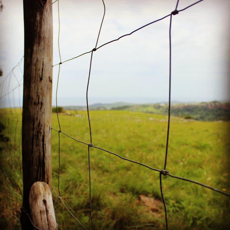 Soms is het gras aan de andere kant groener stock fotografie