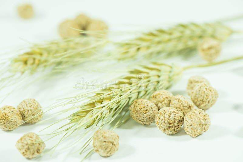 Son de blé images libres de droits