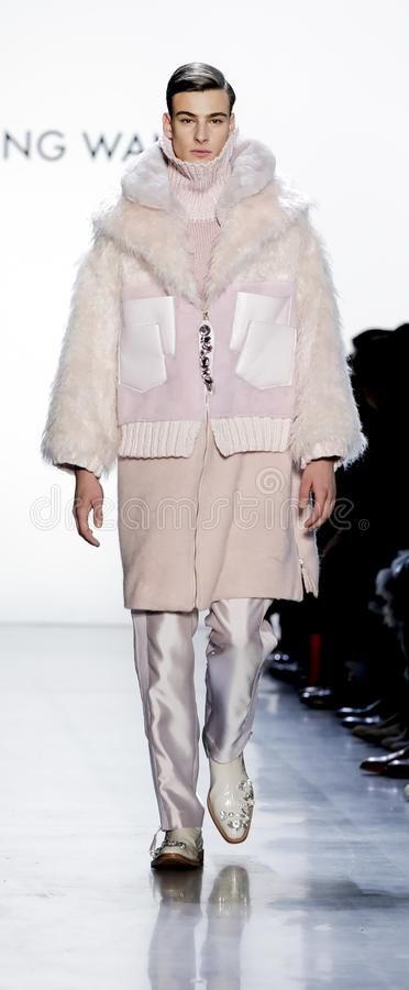Son Jung Wan FW18 stock image