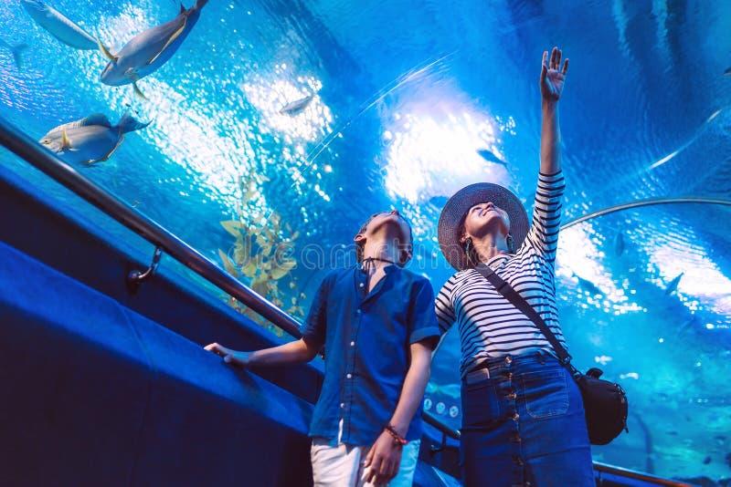Son med hans moder som håller ögonen på undervattens- havsinvånare i den enorma akvariumtunnelen som visar intressera till varand royaltyfria bilder