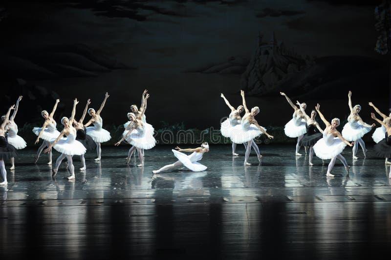 Son Ojta navré est revenu au lac swan de tribu-ballet de cygne images libres de droits