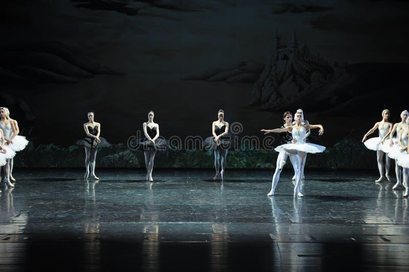 Son Ojta navré est revenu au lac swan de tribu-ballet de cygne photos stock
