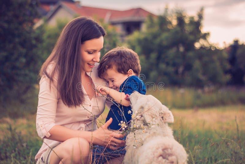 Son som slickas av en hund medan i moderarmar royaltyfri foto
