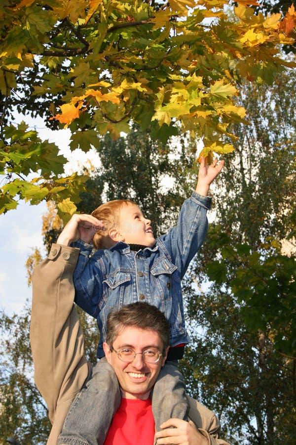 Son take autumn leaf stock photos