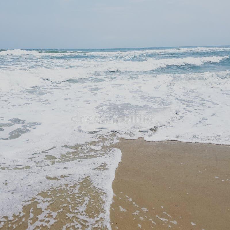 Son un genre pour la plage de jour photos libres de droits
