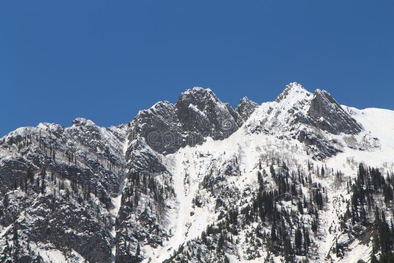 Sonamarg, Srinagar, India: Piękny krajobraz z śnieżną górą zdjęcia royalty free