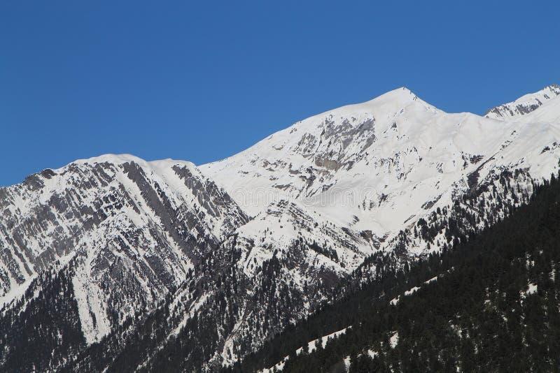 Sonamarg, Srinagar, India: Piękny krajobraz z śnieżną górą obrazy royalty free