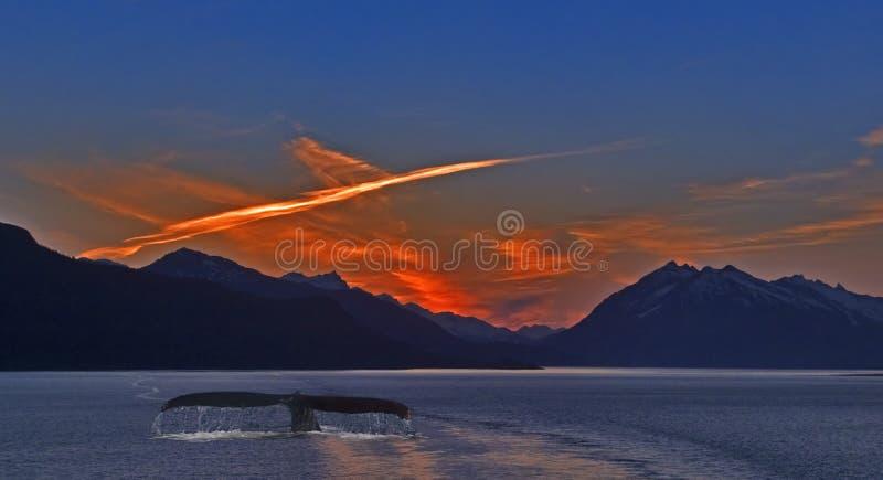 Download Sondaggio al crepuscolo fotografia stock. Immagine di incandescenza - 215258