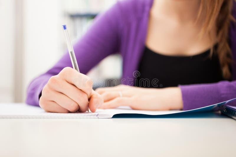 Student bei der Arbeit lizenzfreies stockfoto