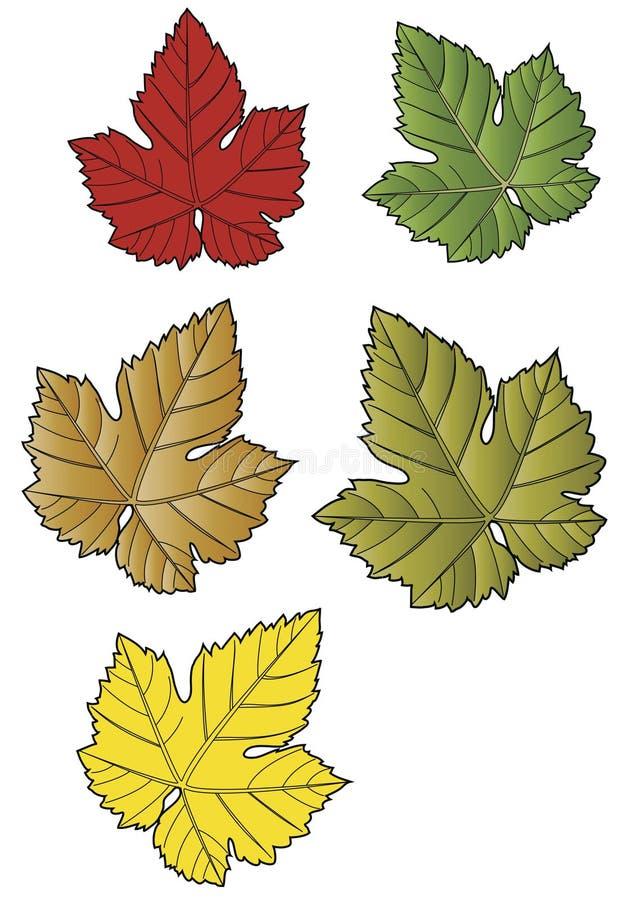Sondern Sie Blätter aus stock abbildung