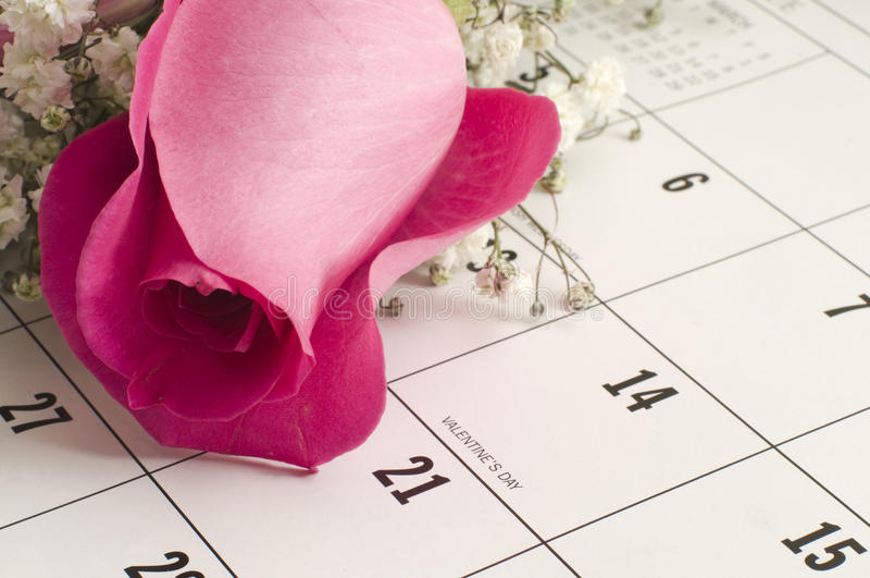 Sondern Sie Rose auf Kalender aus lizenzfreie stockbilder