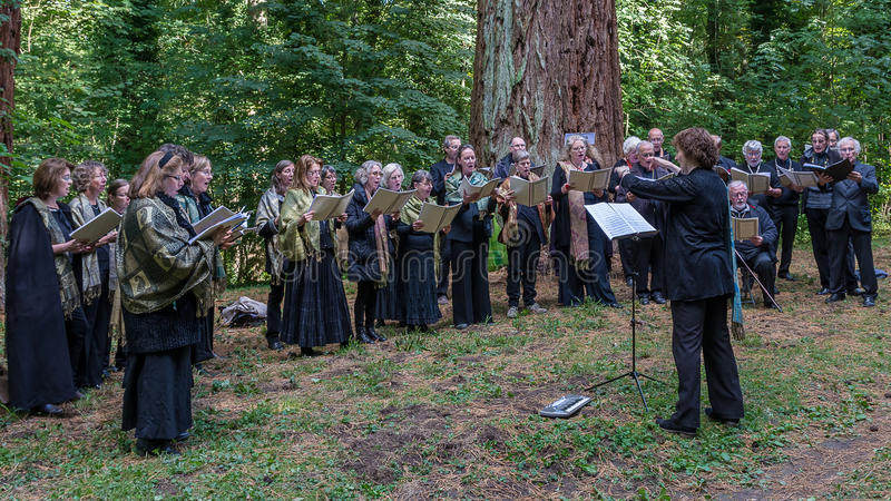 The song of the forest - Choir in the Woods. Choir in the woods of Mériel in France stock image